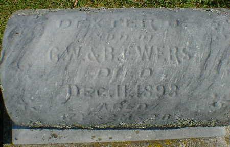 EWERS, DEXTER - Cerro Gordo County, Iowa | DEXTER EWERS