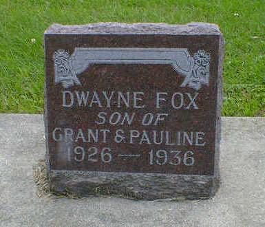 FOX, DWAYNE - Cerro Gordo County, Iowa | DWAYNE FOX