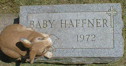 HAFFNER, BABY - Cerro Gordo County, Iowa | BABY HAFFNER