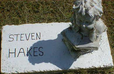 HAKES, STEVEN - Cerro Gordo County, Iowa | STEVEN HAKES