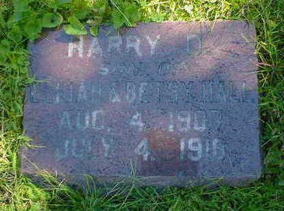 HALL, HARRY D. - Cerro Gordo County, Iowa | HARRY D. HALL