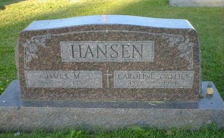 HANSEN, JAMES M. - Cerro Gordo County, Iowa | JAMES M. HANSEN