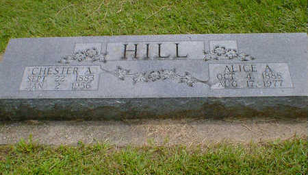 HILL, ALICE A. - Cerro Gordo County, Iowa | ALICE A. HILL
