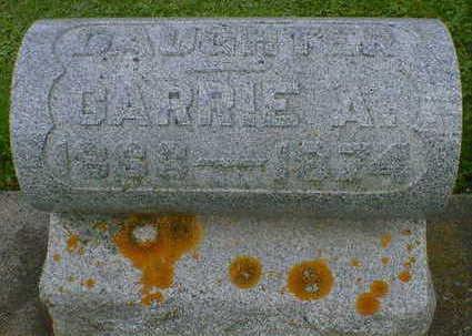 HURD, CARRIE A. - Cerro Gordo County, Iowa | CARRIE A. HURD