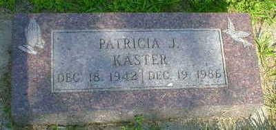 KASTER, PATRICIA J. - Cerro Gordo County, Iowa   PATRICIA J. KASTER