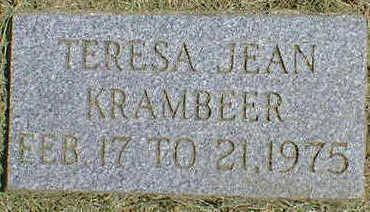 KRAMBEER, TERESA JEAN - Cerro Gordo County, Iowa | TERESA JEAN KRAMBEER
