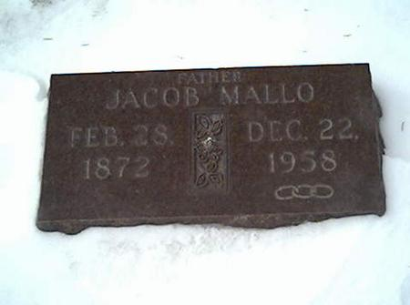 MALLO, JACOB - Cerro Gordo County, Iowa | JACOB MALLO