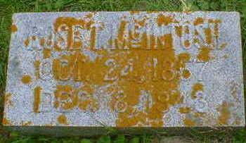 MCINTOSH, ROSE T. - Cerro Gordo County, Iowa   ROSE T. MCINTOSH