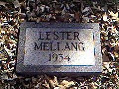 MELLANG, LESTER - Cerro Gordo County, Iowa | LESTER MELLANG
