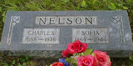 NELSON, CHARLES - Cerro Gordo County, Iowa   CHARLES NELSON