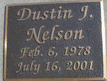 NELSON, DUSTIN JAMES - Cerro Gordo County, Iowa   DUSTIN JAMES NELSON