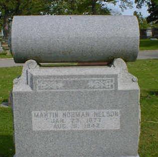 NELSON, MARTIN NORMAN - Cerro Gordo County, Iowa | MARTIN NORMAN NELSON