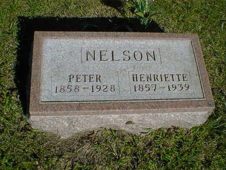 NELSON, PETER - Cerro Gordo County, Iowa | PETER NELSON