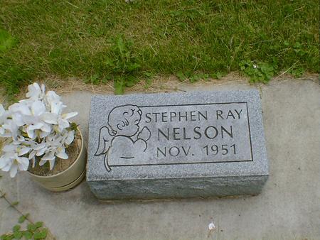 NELSON, STEPHEN RAY - Cerro Gordo County, Iowa | STEPHEN RAY NELSON
