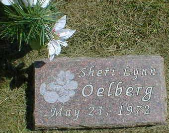 OELBERG, SHERI LYNN - Cerro Gordo County, Iowa | SHERI LYNN OELBERG