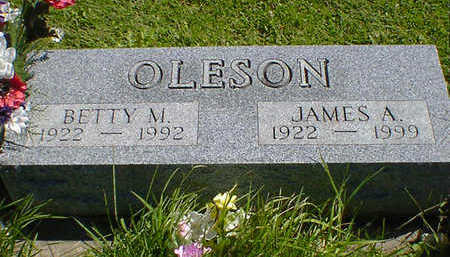 OLESON, JAMES A. - Cerro Gordo County, Iowa | JAMES A. OLESON