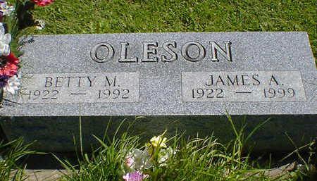OLESON, BETTY M. - Cerro Gordo County, Iowa | BETTY M. OLESON