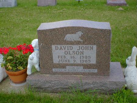 OLSON, DAVID JOHN - Cerro Gordo County, Iowa   DAVID JOHN OLSON