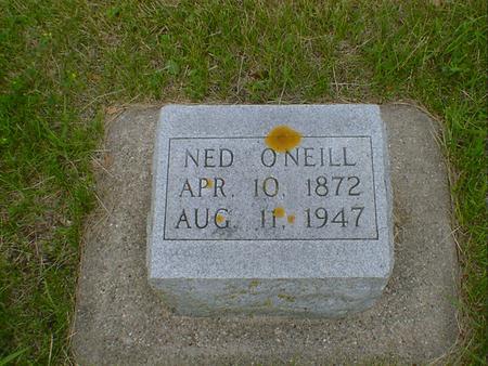 O'NEILL, NED - Cerro Gordo County, Iowa | NED O'NEILL