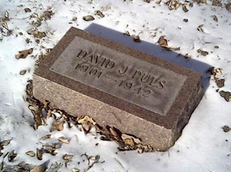 PULS, DAVID - Cerro Gordo County, Iowa | DAVID PULS