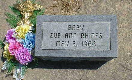 RHINES, EVE ANN - Cerro Gordo County, Iowa | EVE ANN RHINES