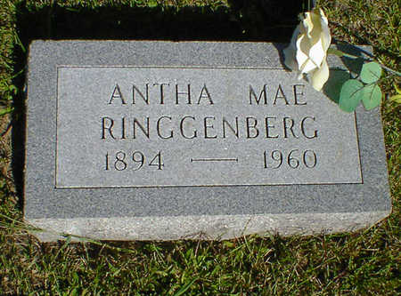 RINGGENBERG, ANTHA MAE - Cerro Gordo County, Iowa | ANTHA MAE RINGGENBERG
