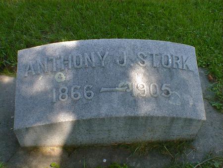 STORK, ANTHONY J. - Cerro Gordo County, Iowa | ANTHONY J. STORK