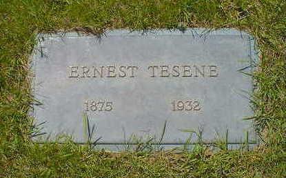 TESENE, ERNEST - Cerro Gordo County, Iowa | ERNEST TESENE