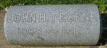 TESENE, JOHN H. - Cerro Gordo County, Iowa | JOHN H. TESENE
