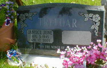 TRELOAR, JANEICE JUNE (KLEIN) - Cerro Gordo County, Iowa | JANEICE JUNE (KLEIN) TRELOAR