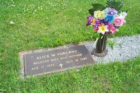 VORLAND, ALICE M - Cerro Gordo County, Iowa | ALICE M VORLAND