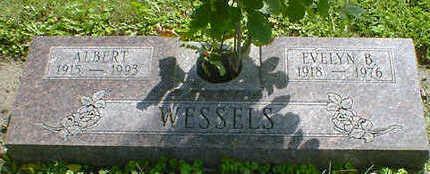 WESSELS, ALBERT - Cerro Gordo County, Iowa | ALBERT WESSELS