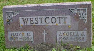 WESTCOTT, ANGELA J. - Cerro Gordo County, Iowa   ANGELA J. WESTCOTT