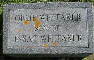 WHITAKER, OLLIE - Cerro Gordo County, Iowa   OLLIE WHITAKER