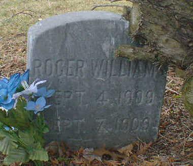 WILLIAMS, ROGER - Cerro Gordo County, Iowa | ROGER WILLIAMS