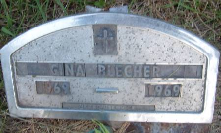 BLECHER, GINA - Cherokee County, Iowa   GINA BLECHER