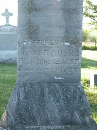 SCHMITZ BUSH, GERTRUDE - Cherokee County, Iowa   GERTRUDE SCHMITZ BUSH