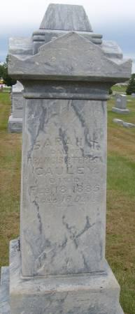 CAULEY, SARAH T. - Cherokee County, Iowa | SARAH T. CAULEY