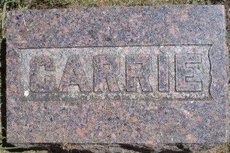 COBB, CARRIE - Cherokee County, Iowa | CARRIE COBB