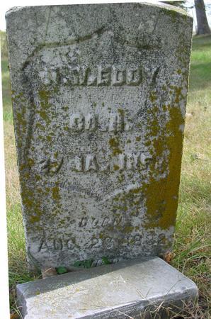 EDDY, M. W. & SARAH - Cherokee County, Iowa   M. W. & SARAH EDDY
