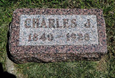 JOHNSON, CHARLES J - Cherokee County, Iowa | CHARLES J JOHNSON