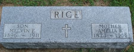 RICE, AMELIA B. - Cherokee County, Iowa | AMELIA B. RICE