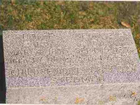 STEDMAN, GEORGE ALBERT - Cherokee County, Iowa | GEORGE ALBERT STEDMAN