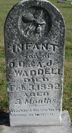 WADDELL, SON - Cherokee County, Iowa | SON WADDELL