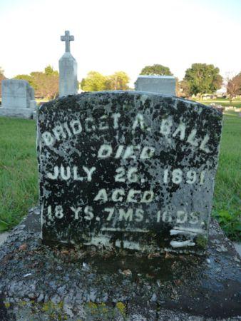 BALL, BRIDGET A - Chickasaw County, Iowa | BRIDGET A BALL