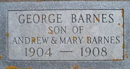 BARNES, GEORGE - Chickasaw County, Iowa | GEORGE BARNES