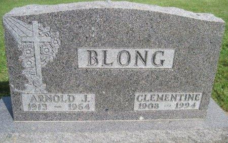 BLONG, ARNOLD J. - Chickasaw County, Iowa | ARNOLD J. BLONG