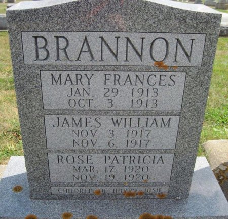 BRANNON, MARY FRANCES - Chickasaw County, Iowa | MARY FRANCES BRANNON
