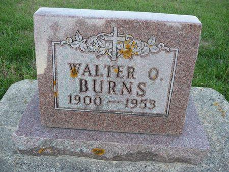 BURNS, WALTER O - Chickasaw County, Iowa | WALTER O BURNS