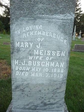 BUSCHMAN, MARY J - Chickasaw County, Iowa | MARY J BUSCHMAN